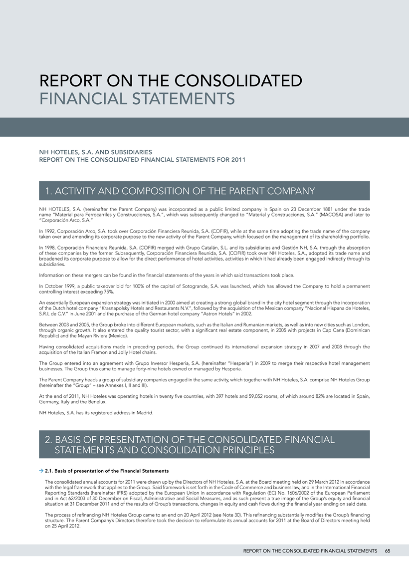 NH Annual Report - Report on the Consolidated Financial